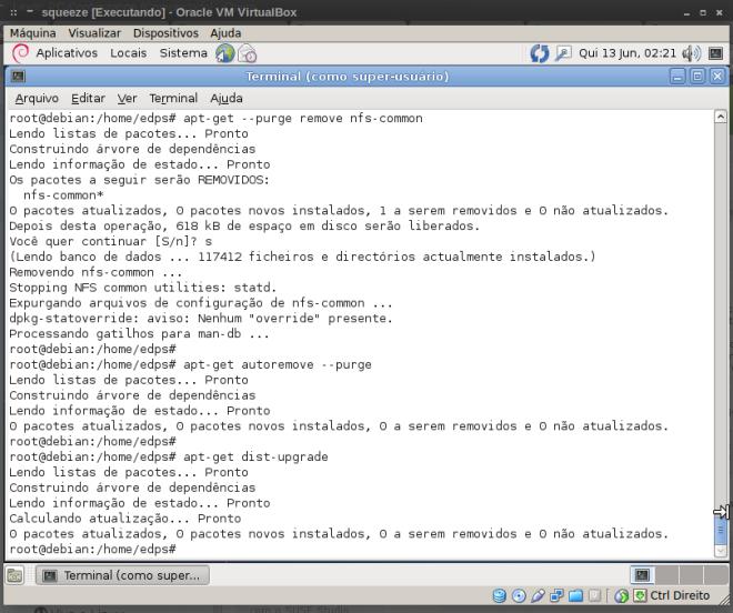 remoção do pacote nfs-common (opcional)...