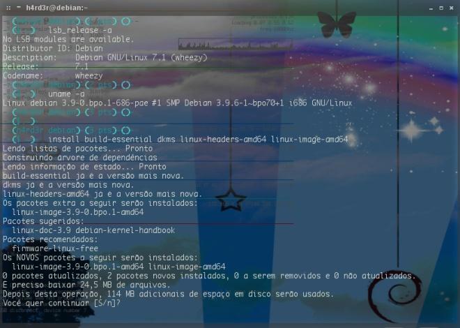 instalação do novo kernel...
