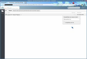 10-tela_do_servidor_logado7