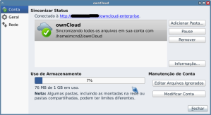 9-tela_do_servidor_logado6