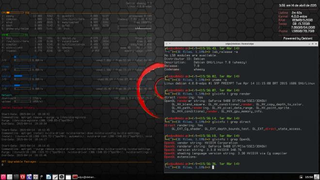 detalhes sobre o sistema, versão do kernel e do driver de vídeo.