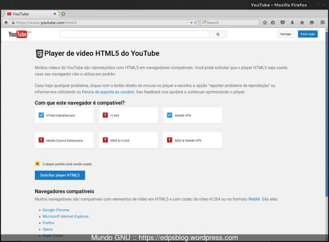 """observe que somente os campos """"HTMLVideoElement"""" e """"WebM VP8"""" estão marcados..."""