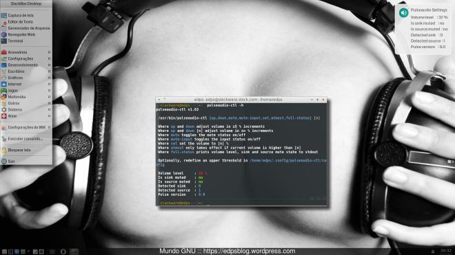 Slackware Current _+ OpenBox + obmenu-generator + temas e ícones Paper e o script pulseaudio-ctl